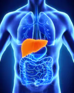 What Part of the Body Does Liver Disease Odor Come From?