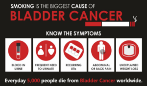 Herbal Natural Treatment for Bladder Cancer Shows Promise