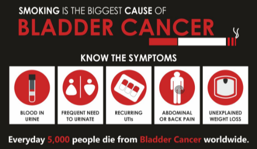 Can Abdominal Ct Scan Detect Bladder Cancer Scary Symptoms