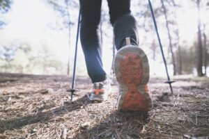 Walking Stick Benefits: Calorie Burn Truth or Hype?