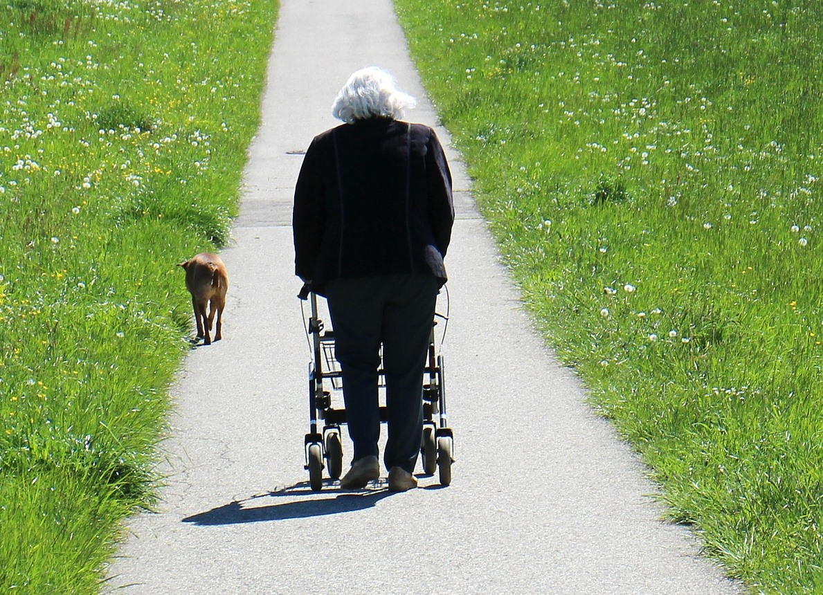 Can Elderly with Broken Hip Recover without Physical Therapy?