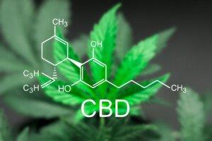 How Much Can Cannabis Really Treat Sleep Apnea?