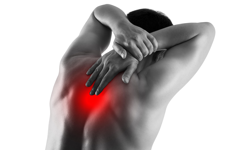 Angina Back Pain vs. Musculoskeletal Back Pain: Comparison